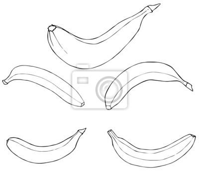 Piękny ogród - Banana