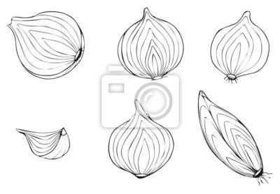 Piękny ogród - plastry cebuli