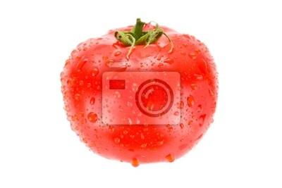 Pomidor z kropli wody na białym tle