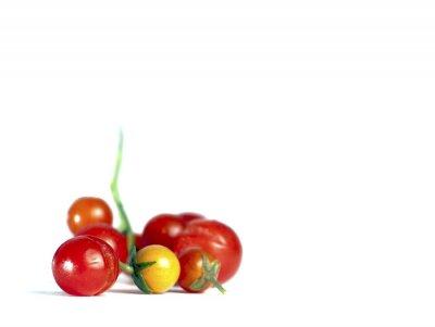 Pomidorki z Ogrodu