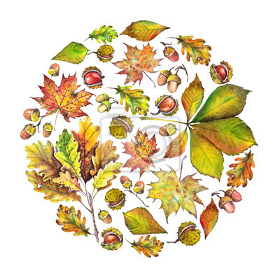 Tapeta Projekt koła z liści jesienią, kasztany i żołędzie. Akwarela ilustracja.