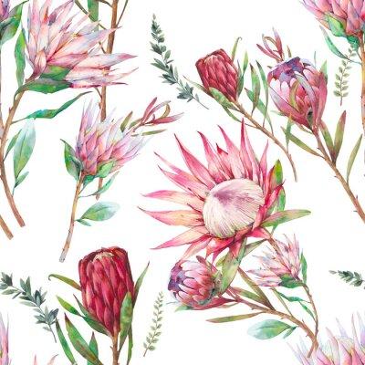 Tapeta Protea flowers seamless pattern.