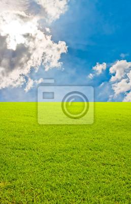 Przechylony bkue pole trawa i niebo