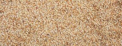 Tapeta Raw sesame seeds full frame background, banner
