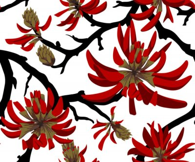 Tapeta Red flowers on white background. Blooming coral tree. Seamless pattern