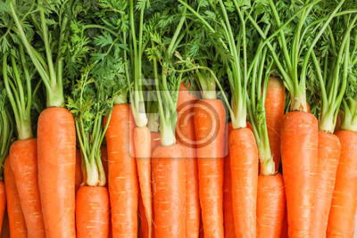 Tapeta Ripe fresh carrots as background, space for text