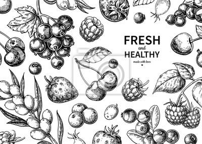 Tapeta Rysunek dzikiej jagody. Ręcznie rysowane rama starodawny wektor. Zestaw letnich owoców