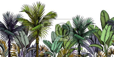 Tapeta Seamless border with green tropical palm trees on white background. Hand drawn vector illustration.