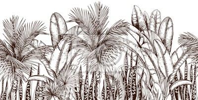 Tapeta Seamless border with palm trees and snake plants. Sketchy tropical leaves. Hand drawn vector illustration.
