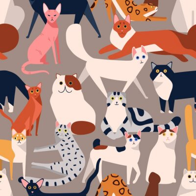 Tapeta Seamless colored pattern with different cat breeds flat illustration. Creative decorative background with various pet vector isolated on gray. Funny cute domestic animal
