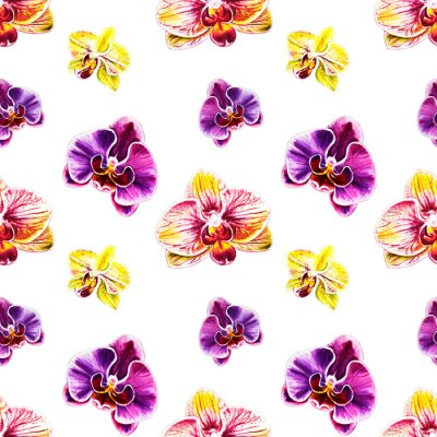 Tapeta Seamless pattern from orchid flowers. Watercolor painting. Exotic plant. Floral print. Botanical composition. Wedding and birthday. Greeting card. Flower painted background. Hand drawn illustration.