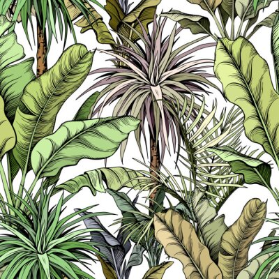 Tapeta Seamless pattern with green tropical trees. Yucca plants and large banana leaves. Hand drawn vector illustration.