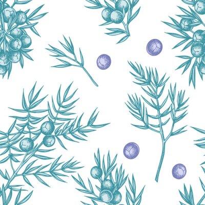 Tapeta Seamless pattern with hand drawn pastel juniper