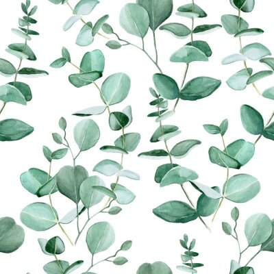 Tapeta Seamless pattern with watercolor eucalyptus leaves on a white background. Vintage pattern with tropical leaves. Ready design for fabric, wallpaper, wrapper, textile.