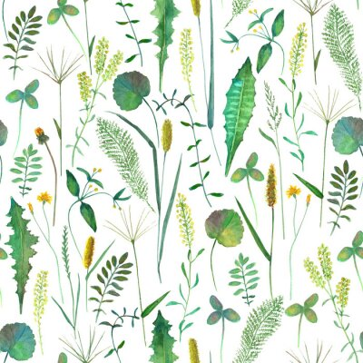 Tapeta Seamless pattern with wild flowers, herbs, grasses. Watercolor hand drawn botanical illustration