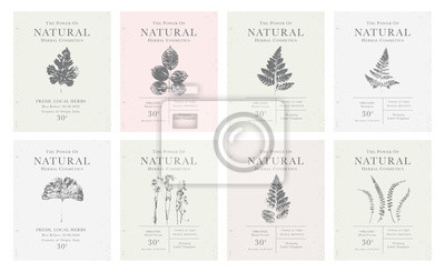 Tapeta Set of customizable vintage label of Natural organic herbal products.