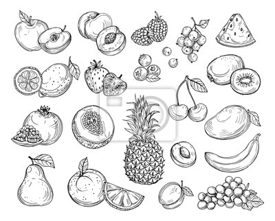 Tapeta Sketch fruits. Strawberry melon, peach mango. Banana pineapple, raspberry grapes hand drawn fruit berry vector set. Illustration of melon and banana, cherry and lemon