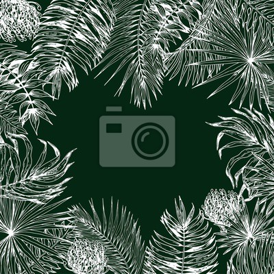 Tapeta Square card with tropical leaves on dark green background. Hand drawn vector illustration. White line drawing.