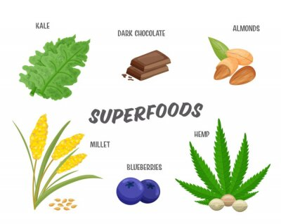 Tapeta Superfoods set, vector illustration. Healthy nutritious products, design elements isolated on white for advertisement