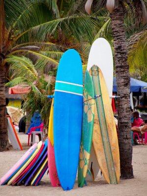 Tapeta Surfer