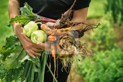 Tapeta świeże warzywa