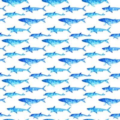 Tapeta Szwu z wielorybów, delfinów i rekinów. Akwarele ręcznie rysowane illustration.Underwater arte.