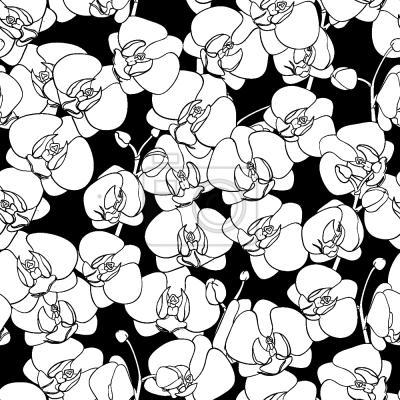 Tapeta Taniec Orchidea