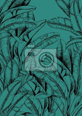 Tapeta Tropical banana leaves on green-blue background. Hand drawn vector illustration.