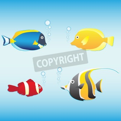Tropical fish collection (Anemone ryby, ryb Motyl, Maurów idol, niebieski tang), ilustracji wektorowych