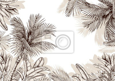 Tapeta Tropical frame with sketchy palm leaves . Hand drawn vector illustration.