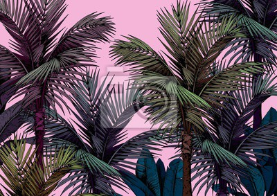 Tapeta Tropical palm trees card on pink background. Hand drawn vector illustration.