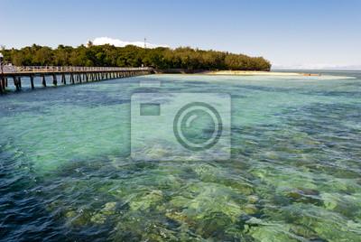 Tropical Paradise Island (Green Island, Queensland, Australia)