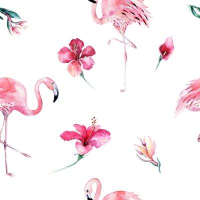 Tapeta Tropikalna bez szwu deseń z Flamingo. Akwarela tropikalny rysunek, różany ptak i drzewo zieleń, tropikalna zielona konsystencja, egzotyczny kwiat. Zestaw Aloha