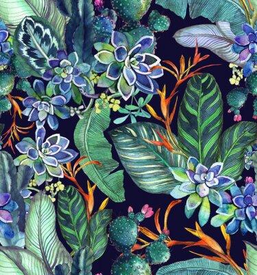 Tapeta Tropikalny wzór z sukulentów, tropikalny liści. Tło botaniczne