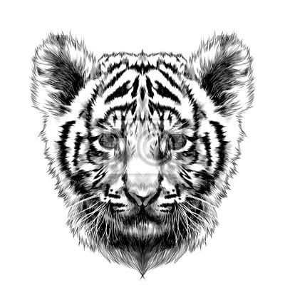 Tapeta tygrys szef szef szkic grafiki wektorowej rysunek czarno bia y czarny sztuka pi kno - Tete de tigre dessin facile ...