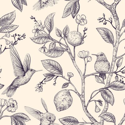 Tapeta Vector sketch pattern with birds and flowers. Hummingbirds and flowers, retro style, nature backdrop. Vintage monochrome flower design for wrapping paper, cover, textile, fabric, wallpaper
