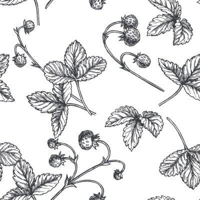 Tapeta Vector vintage seamless pattern with wild strawberry in engraving style. Hand drawn botanical texture with berries. Black and white floral sketch illustration