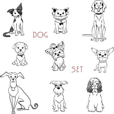 Tapeta Vector zestaw czarno-białych psów różnych ras