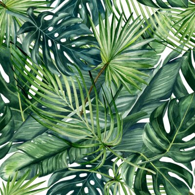 Tapeta Watercolor hand painted seamless pattern with green tropical leaves of monstera, banana tree and palm on white  background.