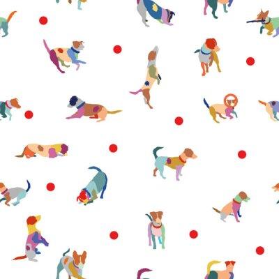 Tapeta Wektor bez szwu deseń z kolorowych psów terier