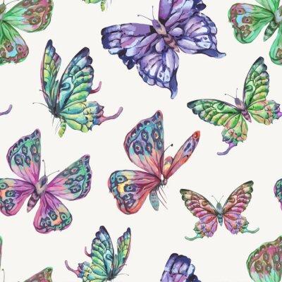 Tapeta Wektor wiosna naturalny wzór z motylami