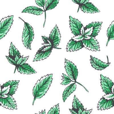 Tapeta Wektorowy bezszwowy wzór z nowymi liśćmi. Botaniczna ręka rysująca ilustracja ziele. Kwiatowy tekstury w stylu szkicu
