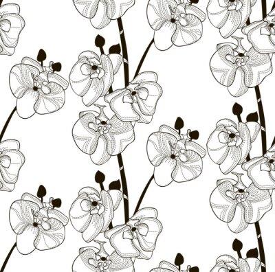 Tapeta Wektorowy Czarny Bezszwowy wzór z Patroszonymi Storczykowymi kwiatami