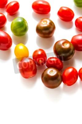 Wielobarwny pomidory koktajlowe zbierane z ogrodu ekologicznego.