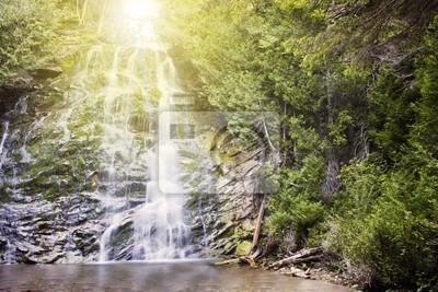 Tapeta Wodospad w pięknym lesie