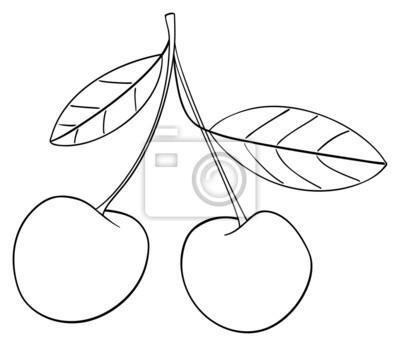 Tapeta Wspaniały ogród - Dwa wiśni połączone razem z łodygą
