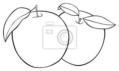 Tapeta Wspaniały ogród - Zestaw dwóch jabłek z trzema liśćmi