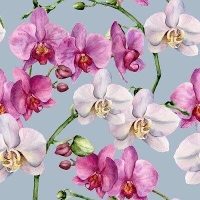 Tapeta Wzór akwarela z białego i różowego orchidee. R? Cznie malowane kwiatów botaniczne ozdoba. Do projektowania, tkanin lub drukowania.