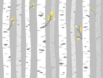 Tapeta Wzór drzewa Aspen