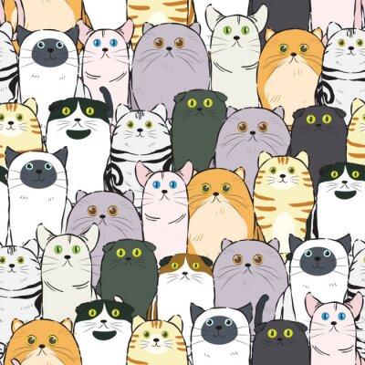 Tapeta wzór kota bez szwu